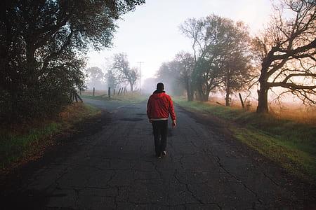 man walks on pathway near trees at daytime