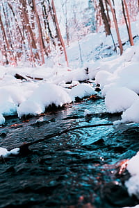 White Snow Photography