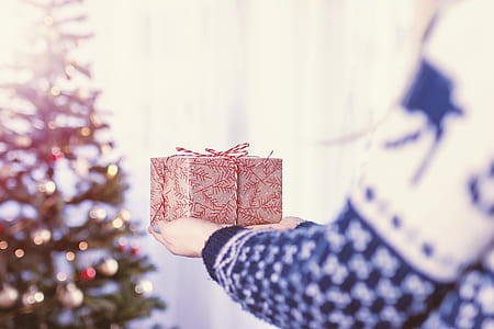 person holding gift box near Christmas tree