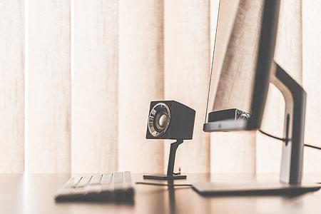 Speaker in Minimalistic Office Workspace Setup