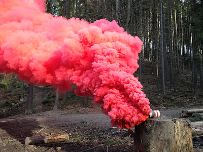 red-colored smoke on tree log