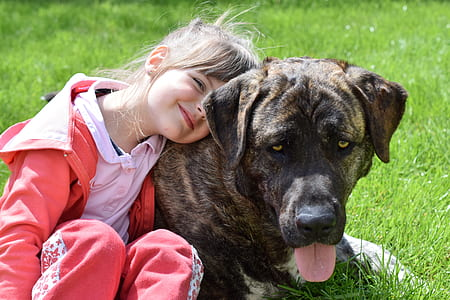 girl wearing pink jacket leaning on short coated brown dog