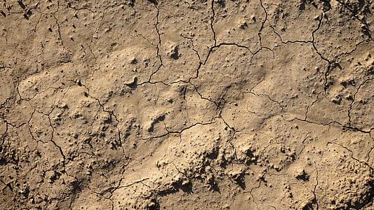crack brown soil