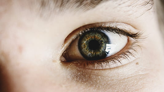focal focus photography of person's left eye