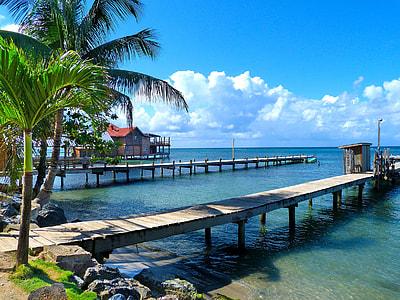 wooden dock on beach