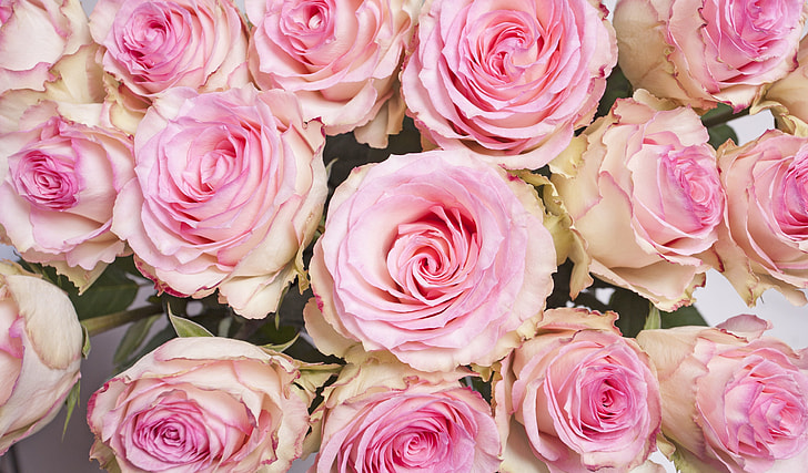 pink-and-peach flower arrangement