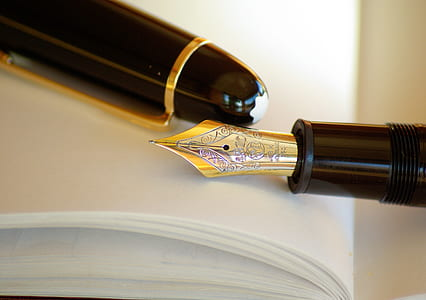 Gold and Silver Nib Black Holder Pen