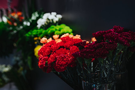 Collection of colourful flower bouquets