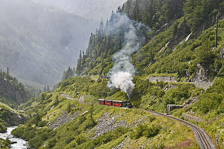 photo of train passing mountain covered with trees during daytime
