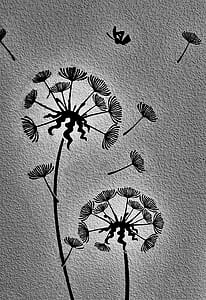 2-dandelion illustration