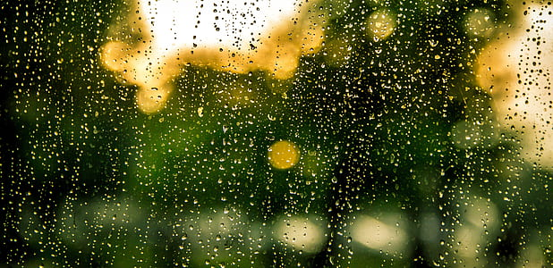 rain, water, drops, raindrops, window, wet