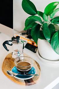 gray steel coffee press