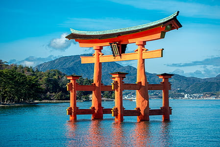 brown wooden tori gate on body of water