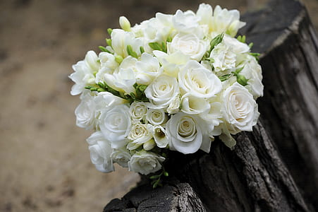 white roses bouquet on a wooden surface
