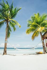 white hammock near seashore during daytime