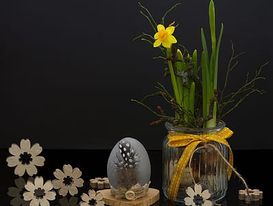 yellow daffodil and clear glass vase