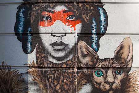 Wide angle shot of street art, image captured in Shoreditch