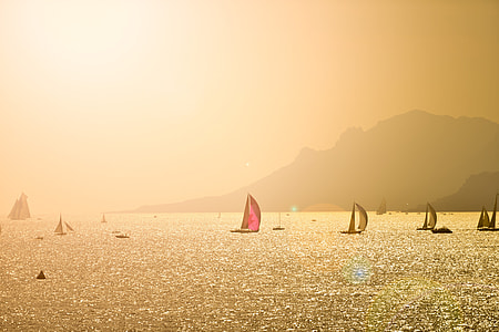 brown and pink sail boat above body of water
