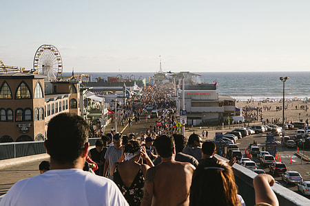 people walking toward the beach during daytime