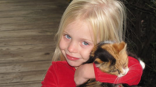 girl wearing red long-sleeved shirt holding calico cat
