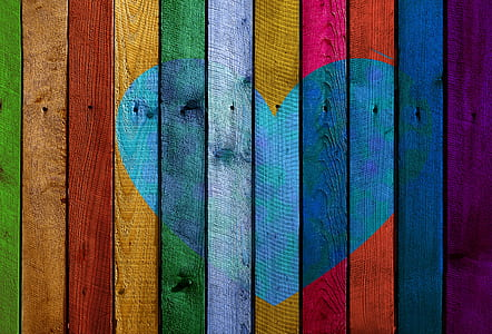 multicolored wood plank