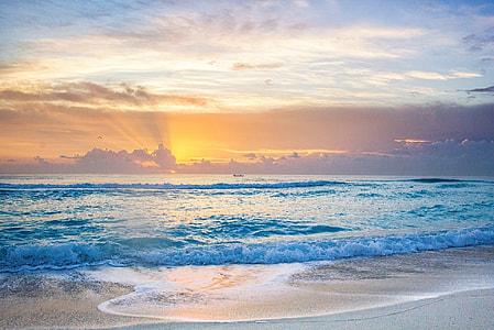 beach shore during golden hour