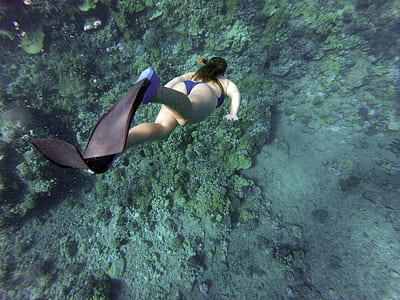 photography of woman in blue bikini set wearing pair of black flippers diving under body of water
