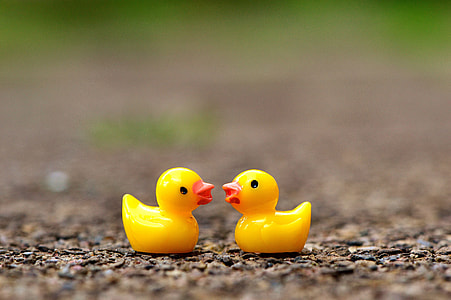 two rubber ducklings on the ground