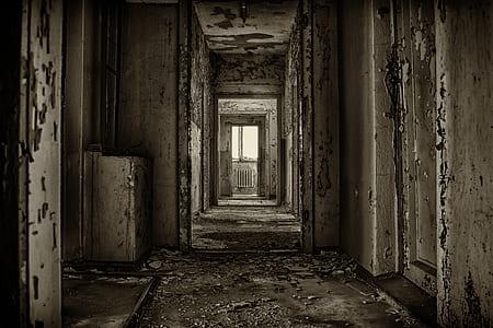 white and gray hall way