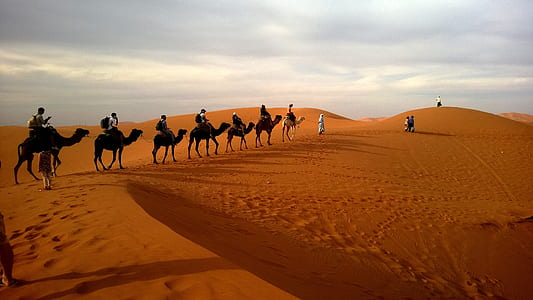 group of people riding camels crossing desert during daytime