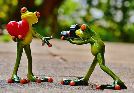 two green frog figures holding a heart and a camera