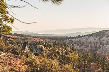 landscape photography of mountains and trees