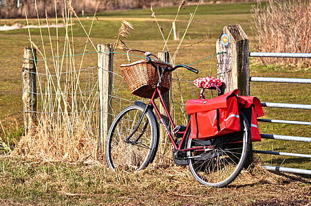 bicycle parked beside fence