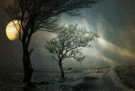 low light photographed of milky way