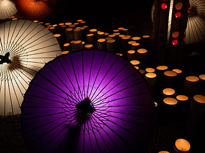 purple umbrella on black floor