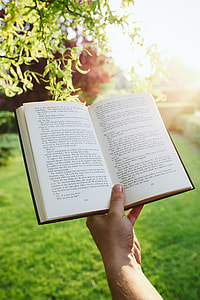 Man reading a book outdoors