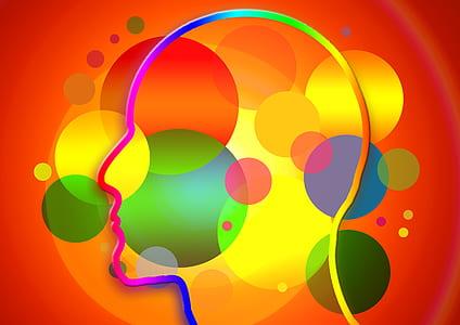 multicolored man face illustration