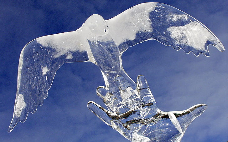 close up photo of eagle ice carving