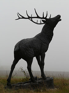 gray concrete deer statue