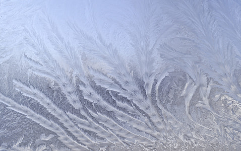 frosted ice close-up photography