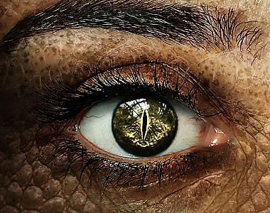 close up photo of human snake eye