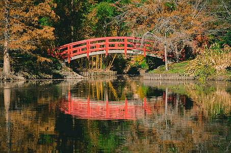 Orange and White Bridge