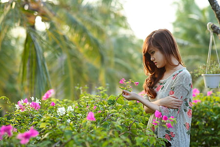 selective focus photography of woman holding pink bougainvillea flower