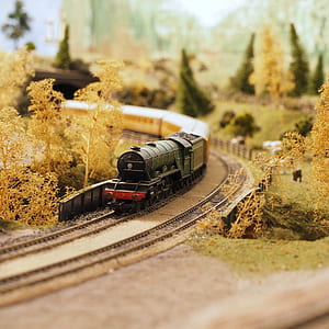 Black and Red Miniature Train Surrounded by Artificial Trees and Grass