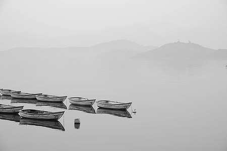 white and black boats on body of water