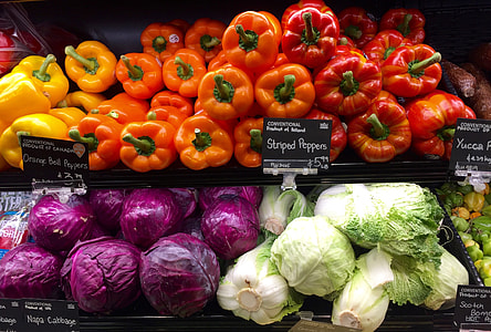 assorted variety of vegetables