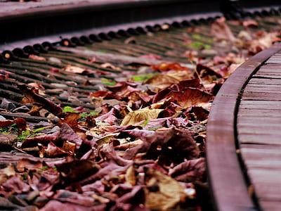 Brown Dried Leaf over Black Rail