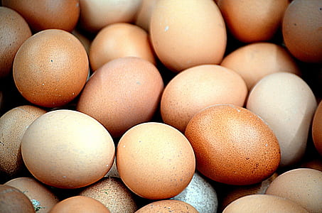 brown and beige egg lot
