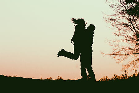 silhouette, couple, field, grass, tree