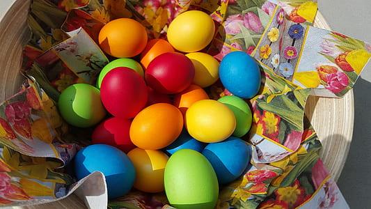 assorted-color Easter egg lot on basket